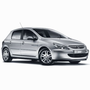 Выкуп дверей Peugeot Peugeot 307